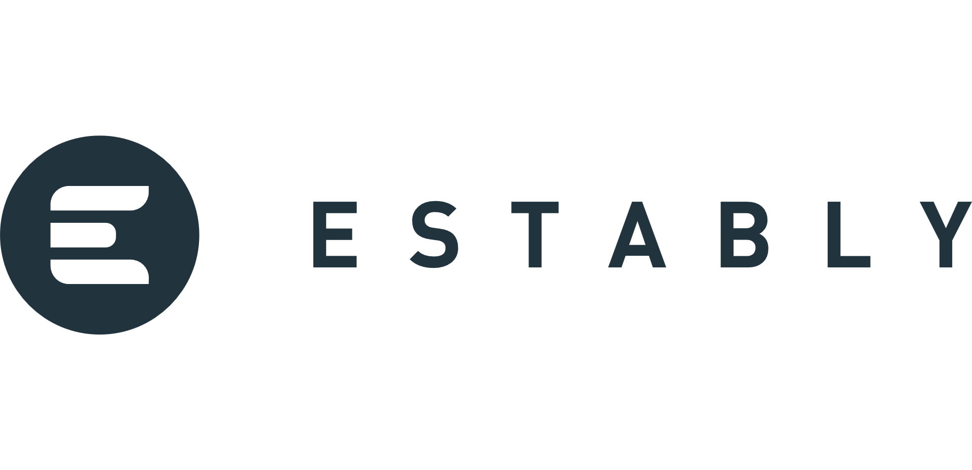 RoboAdvisor von Estably